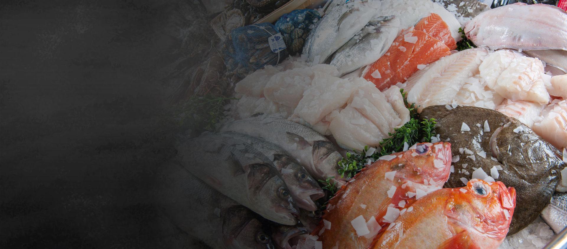 vishandel-volendam-zoetermeer-slider